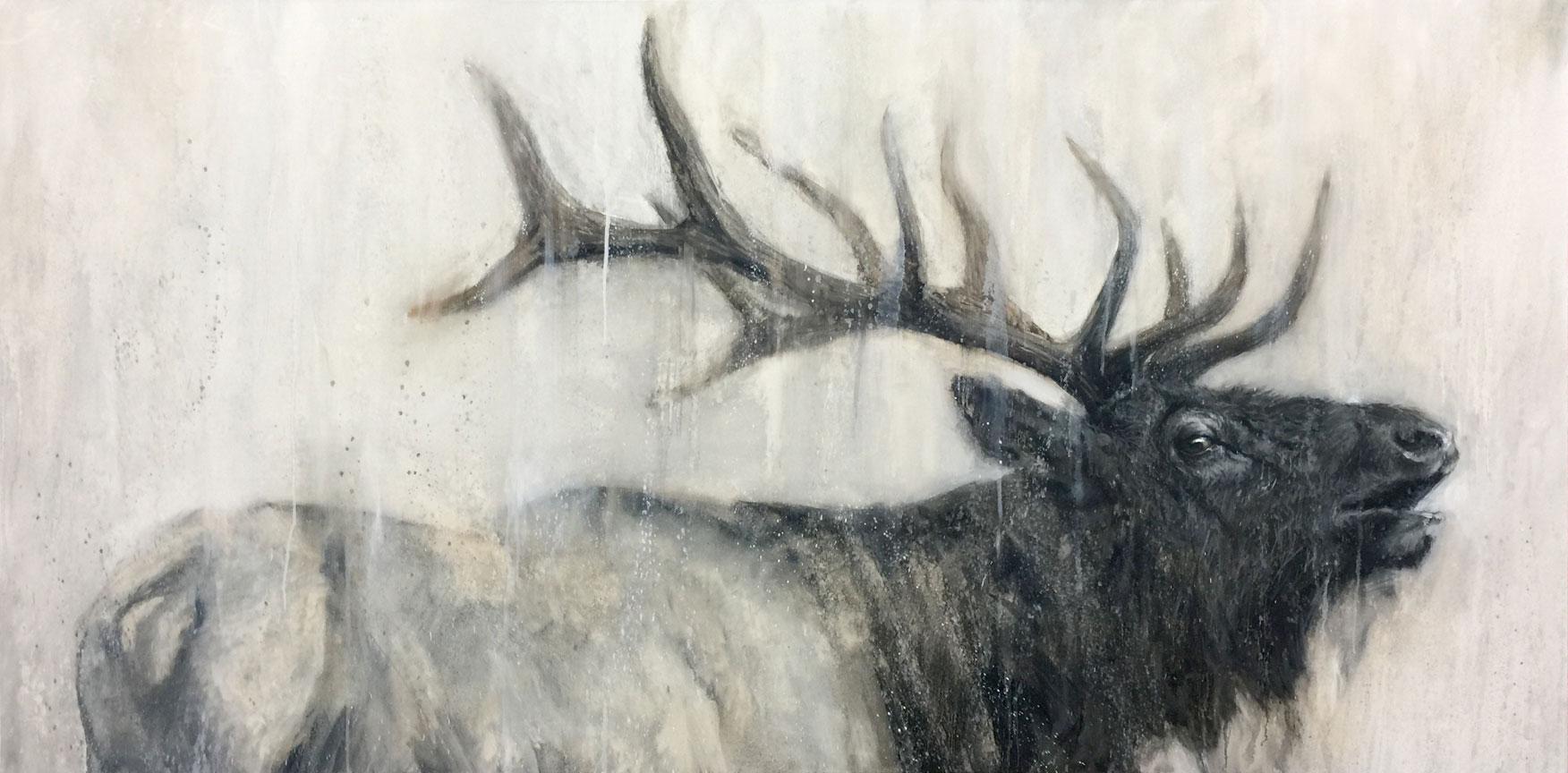 Elk in Profile