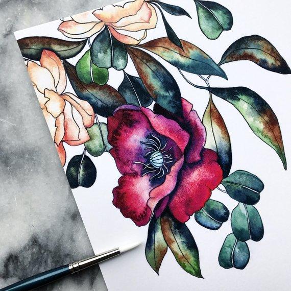 THE MINT GARDENER:  Burgundy, poppy drawing