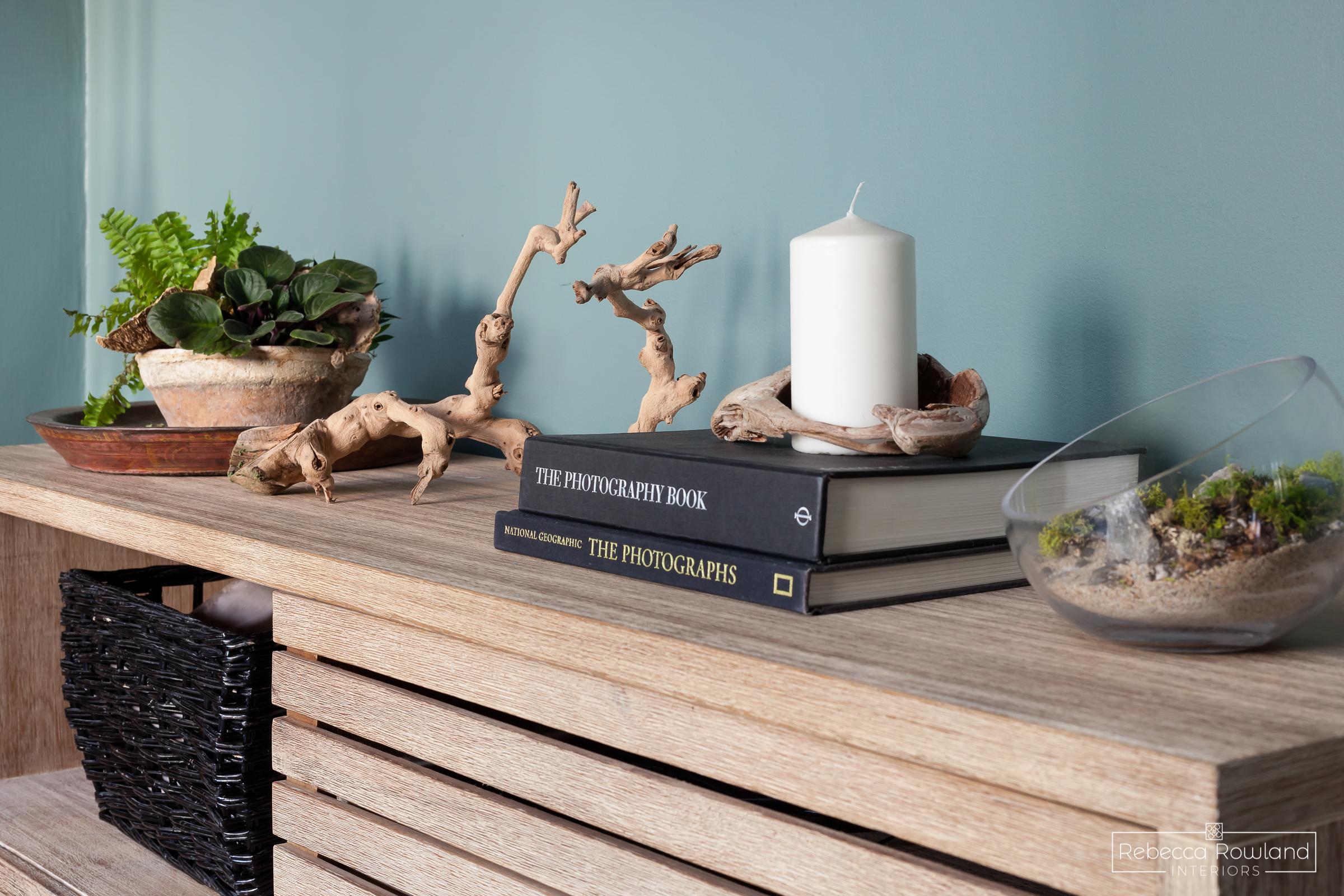 Rebecca Rowland Interiors _Roosevelt_Craftsman_seattle_interior_design_cozy_den_decor_booksandplants