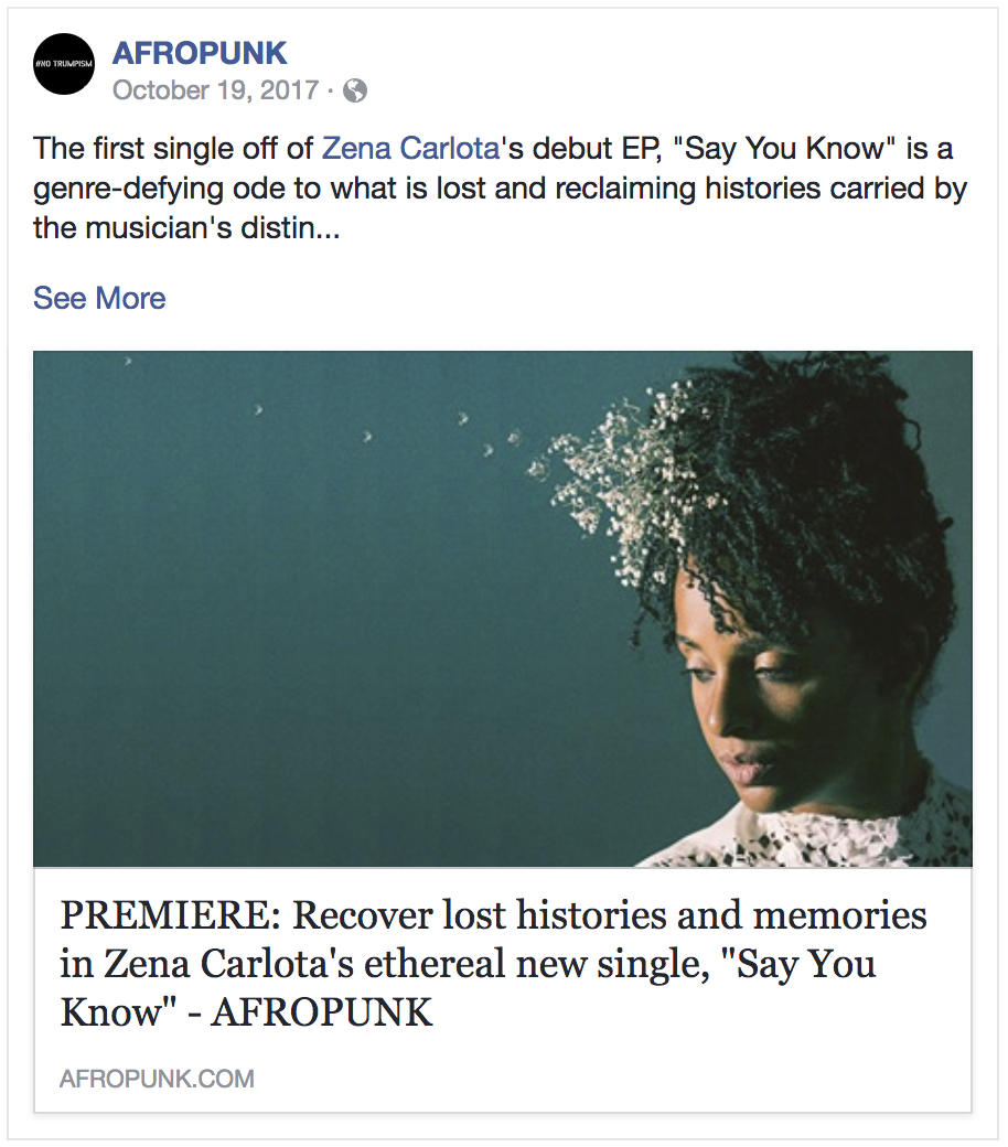 Afro-Punk premiers Zena's first music video… -