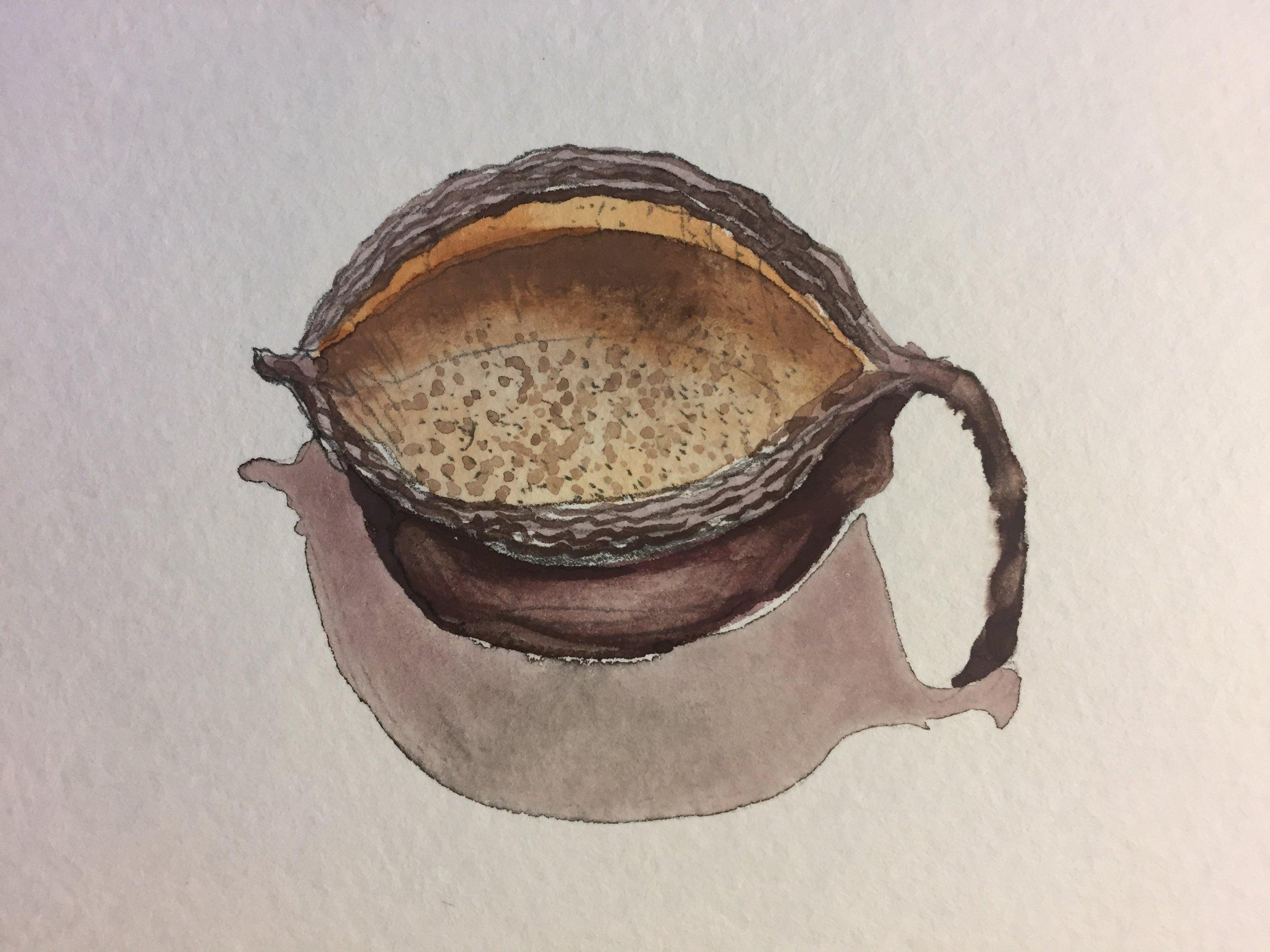 - arizona seed pod 6