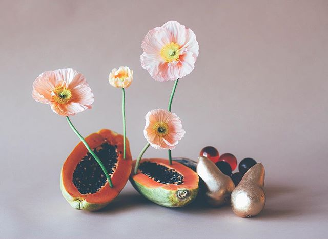 poppaya : (n) pop -a - ya;  the art of using a papaya to hold and display poppies