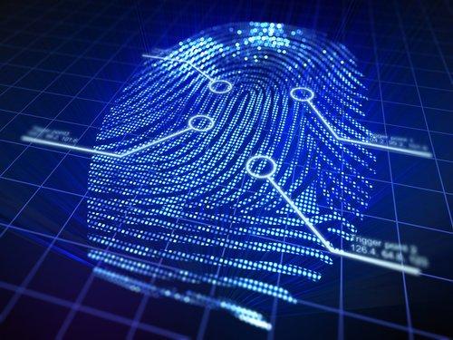 Security Firms &Private Investigators -