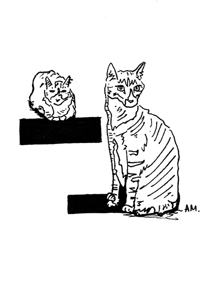 Cats #21