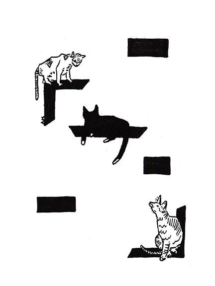 Cats #22