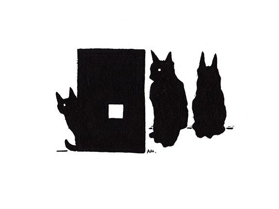 Cats #23