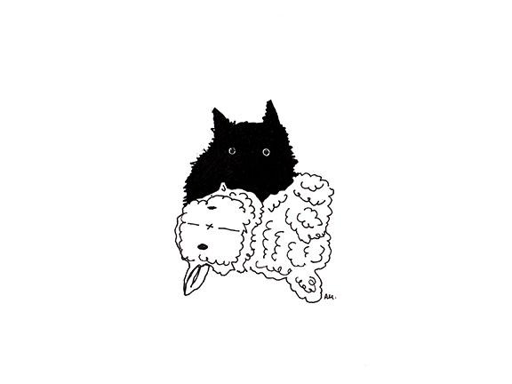Cats#24_Tiny_72.jpg