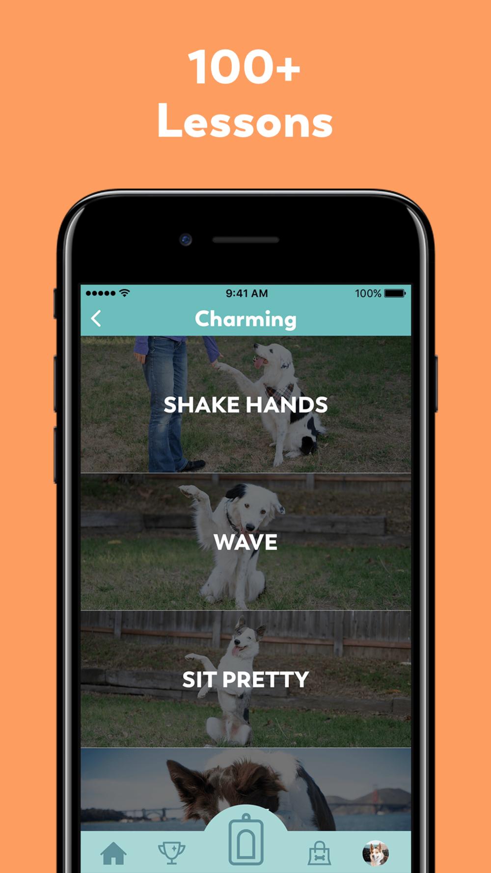 Peppr app