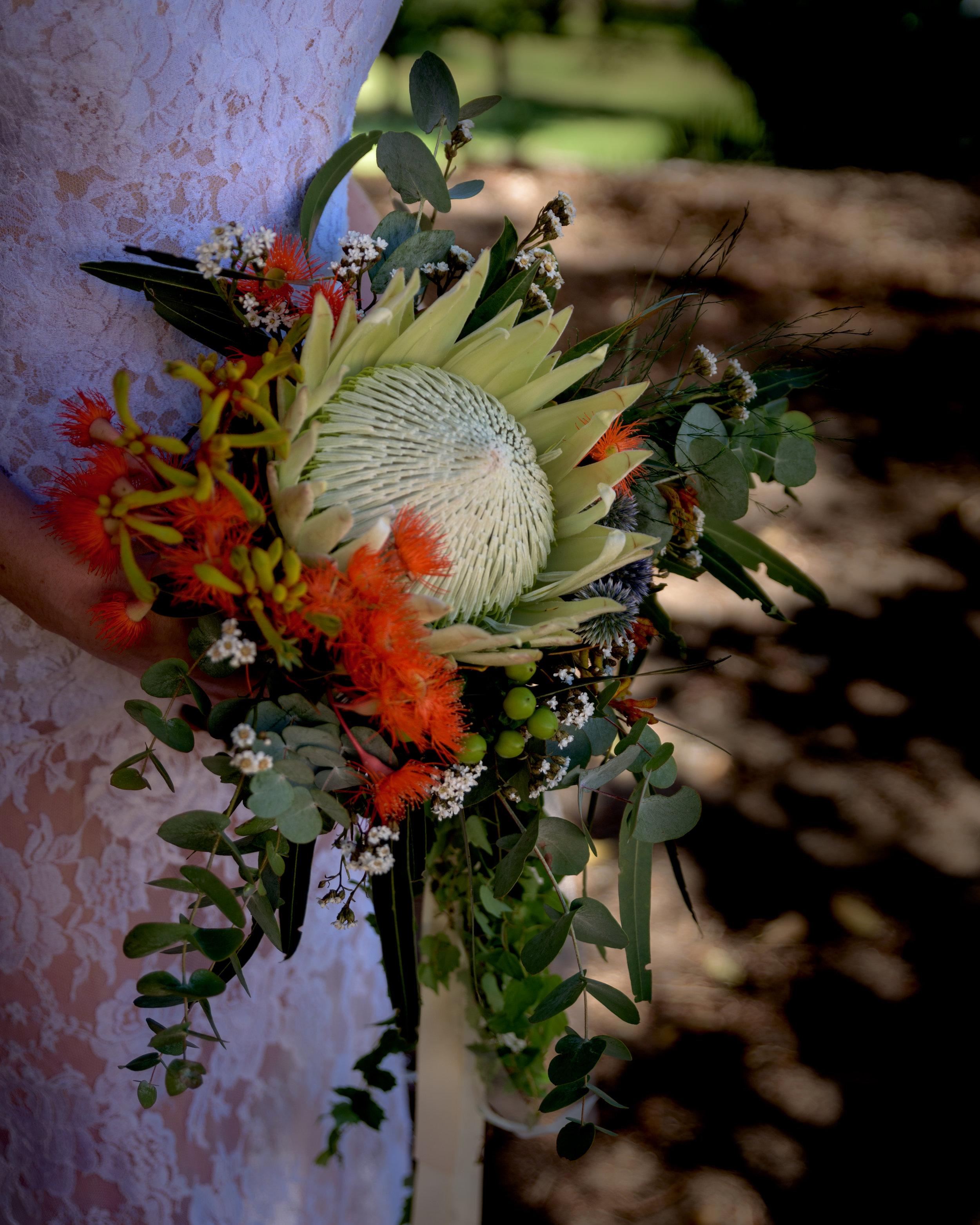 180121-www.taliastravels.com-008.jpg