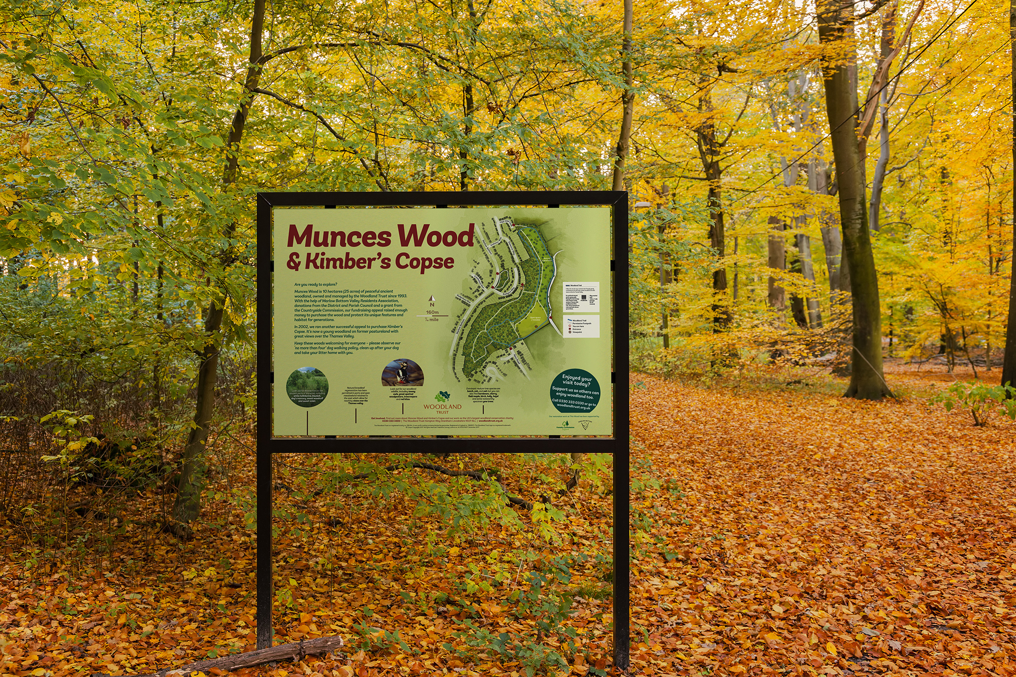 munces_wood_board.jpg