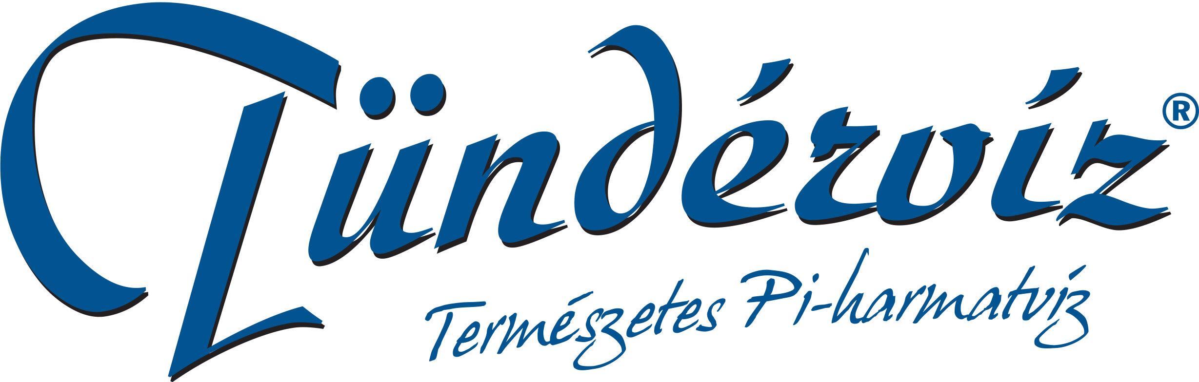 logo tunderviz.jpg