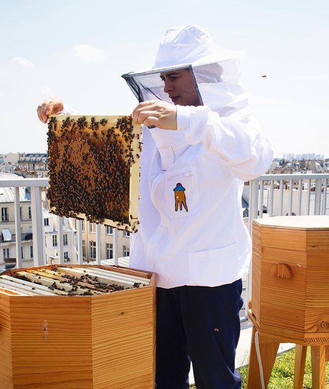 👩🏼🚀/🔎/🐝/🏰 . . . . . . . #ruche #beehive #bees #abeilles #rucheeustache #eustache #🏰#apiculture #🐝 #beekeeping #urbanbeekeeping #apicultureurbaine #rucher #miel #honeycomb #honey #🍯 #design #designer #productdesign #🔨 #🔧 #🔩 #toit #rooftop #roof #view