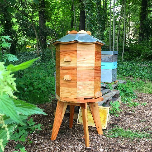 👋🏽 Eustache 🏰🐝dans le rucher de la @fondationgoodplanet 👋🏽 . . . . . . . #ruche #beehive #bees #abeilles #rucheeustache #eustache #🏰#apiculture #🐝 #beekeeping #urbanbeekeeping #apicultureurbaine #rucher #miel #honeycomb #honey #🍯 #design #designer #productdesign #🔨 #🔧 #🔩