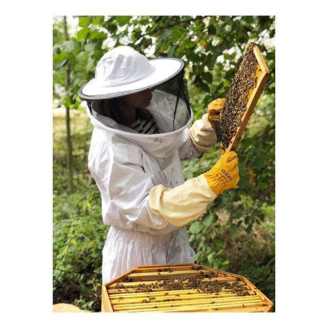 👩🏼🚀🔎 🐝Eustache, hier, @fondationgoodplanet 👋🏽 avec @cheptel_ruches 🌞 . . . . . . . #ruche #beehive #bees #abeilles #rucheeustache #eustache #🏰#apiculture #🐝 #beekeeping #urbanbeekeeping #apicultureurbaine #rucher #miel #honeycomb #honey #🍯 #design #designer #productdesign #🔨 #🔧 #🔩 📷🙏🏽 @cheptel_ruches