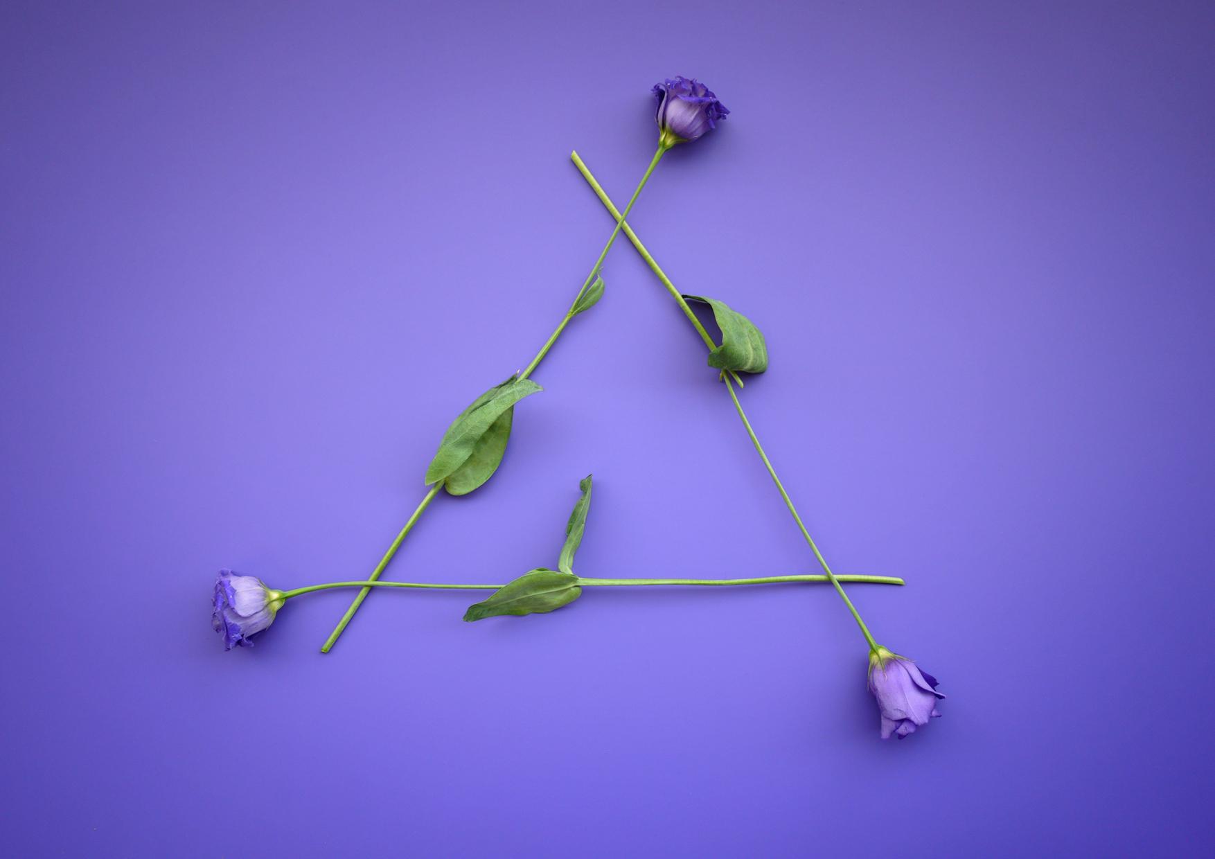 Flower Triangle.jpg