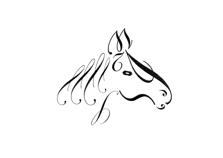 horse4.jpg
