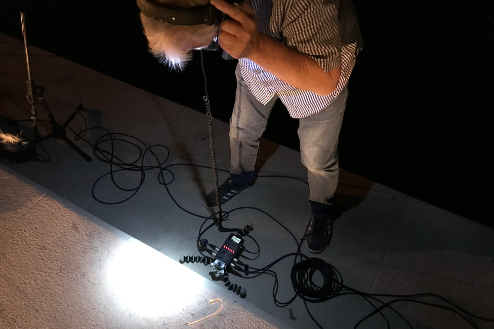 Recording-sea-organ-by-night-10.jpg
