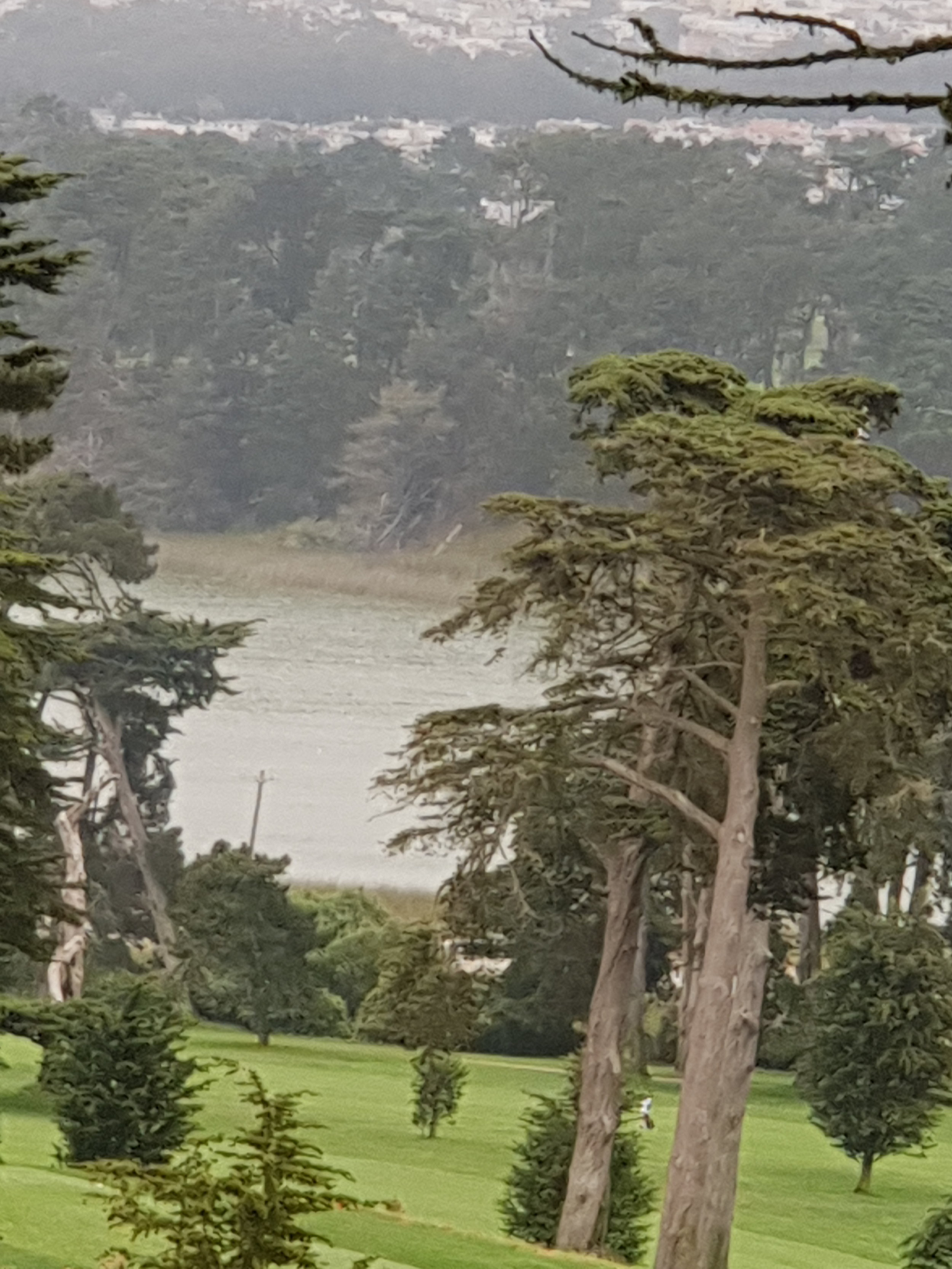 2018 Breathtaking views at 'The Olympic Club' Lake Course '