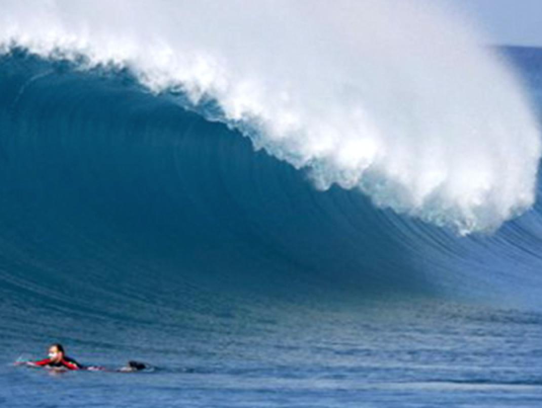- Durante estos días, el barco irárecorriendo las islas del Atolón norte de Male, en busca de las mejores olas en el mejor momento. Además, disfrutarás de traslados diarios desde el barco en el dhoni o dinghy a las olas y a las islas.
