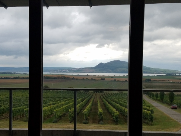 The view from the tasting room at Sonberk
