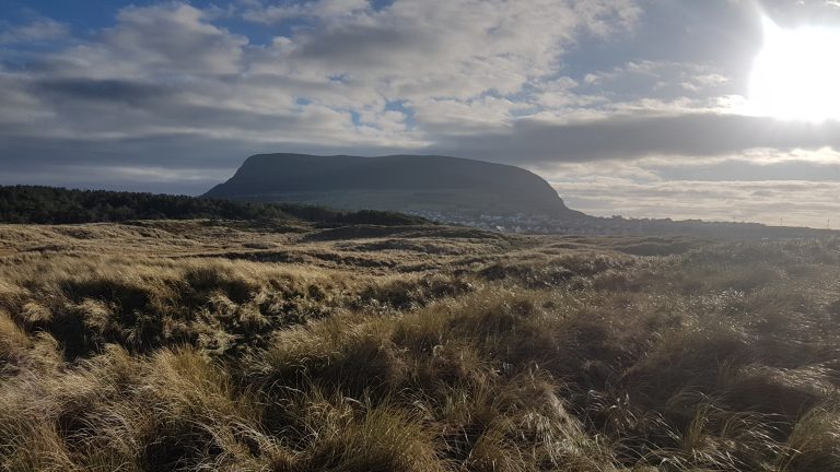Knocknarea backdrop, December 2016.