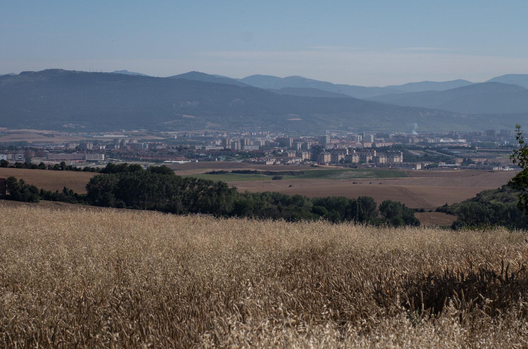 Camino_Selected--3.jpg
