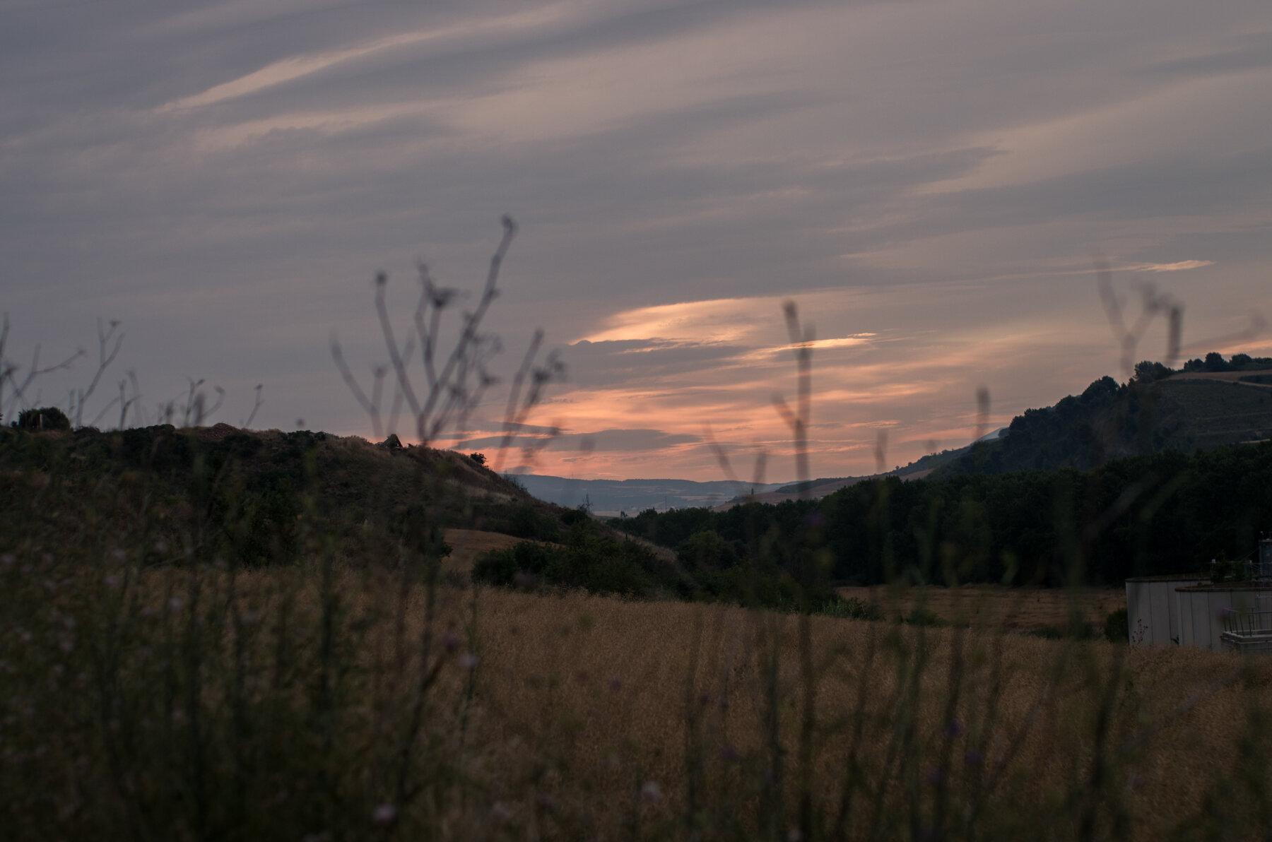 Camino_Selected--4.jpg