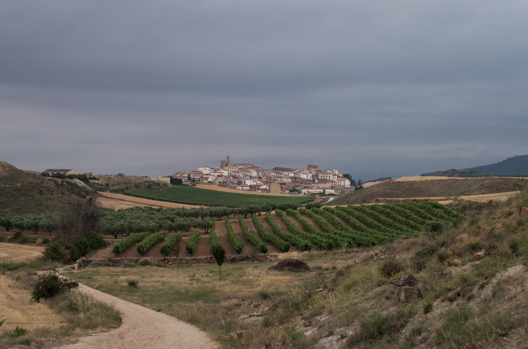 Camino_Selected--5.jpg
