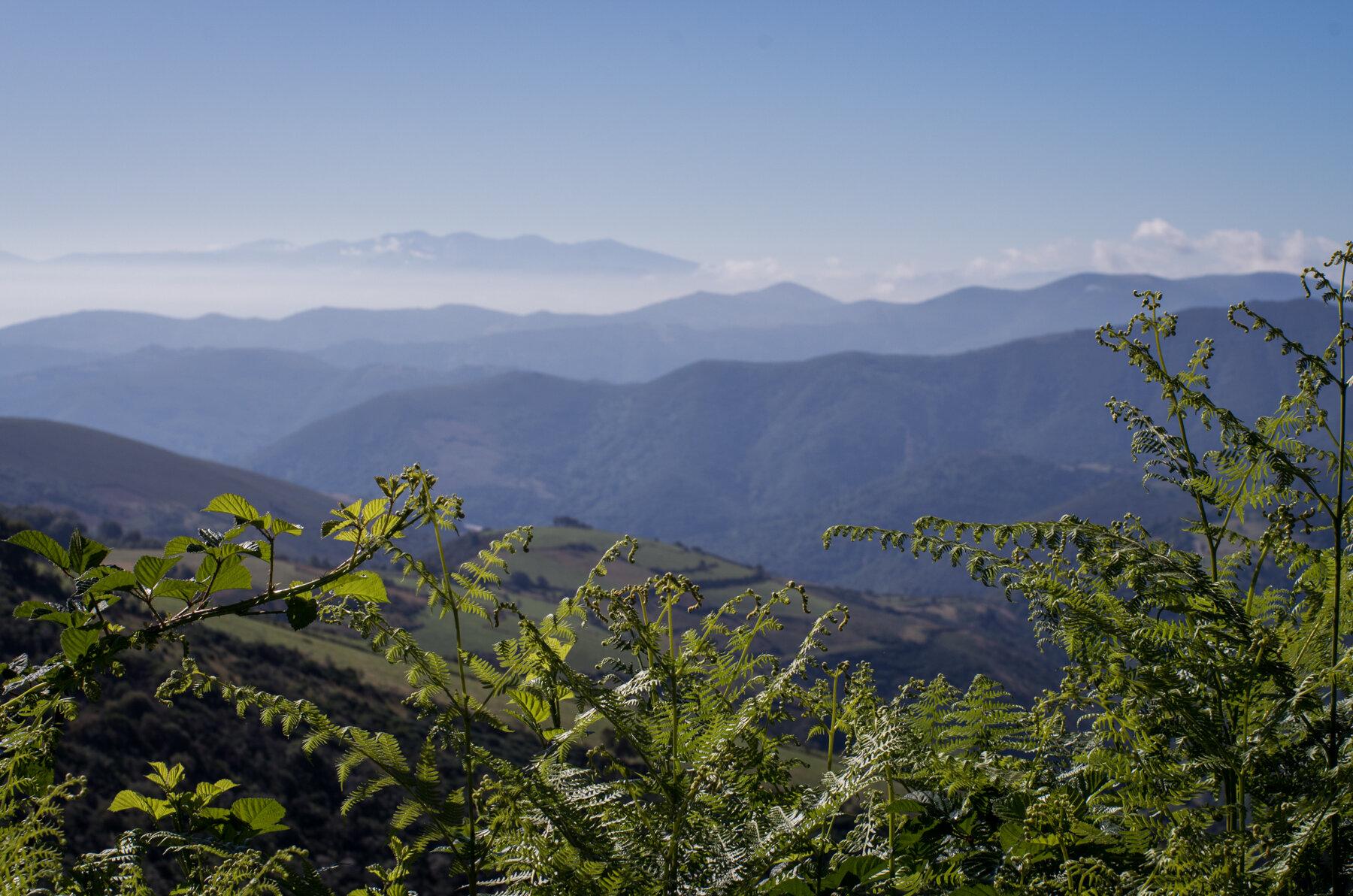 Camino_Selected--46.jpg