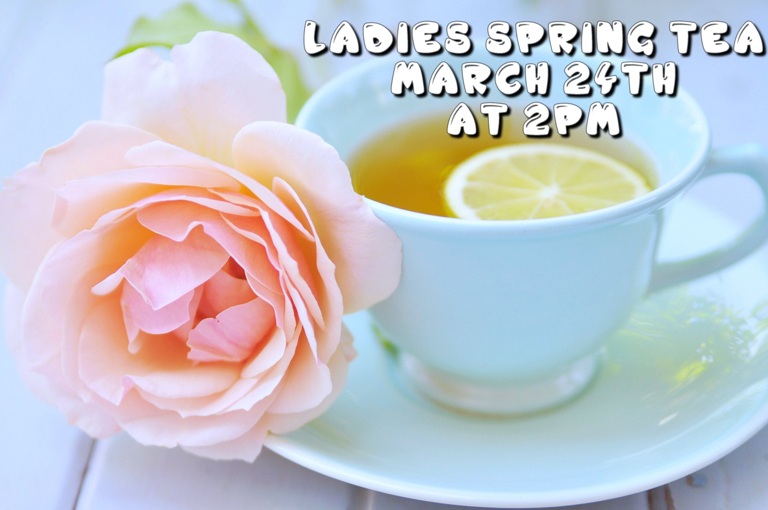 Ladies Spring Tea - The ladies of Grace Pointe will be having a spring tea on March 24th from 2-4pm. Come out and enjoy a lovely time with ladies in fellowship over some tea and hear a powerful message from Mrs. Kristen Miles. If you would like to host a table or to attend please fill out the form below!