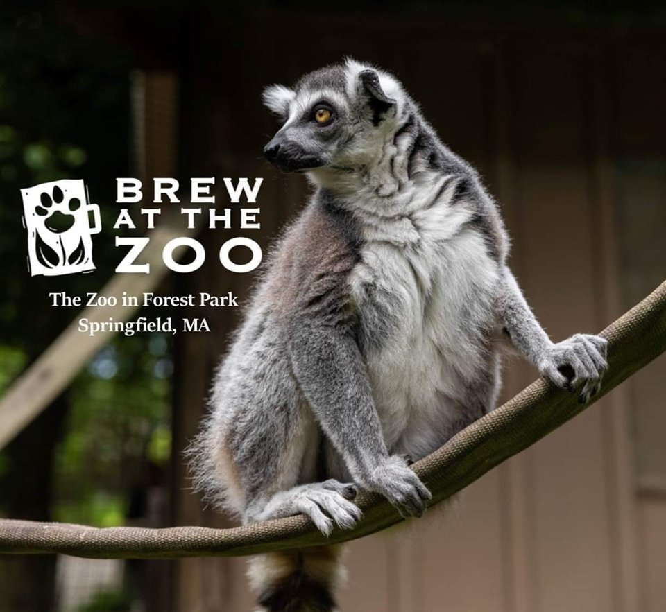 AUG 17TH  BREW AT THE ZOO AT FOREST PARK