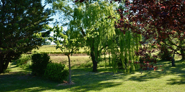 CampingLeChamadou-4étoiles-SudArdèche-MiniFerme-TobogganAquatique-Lac-Enfants-Animaux-Familial1