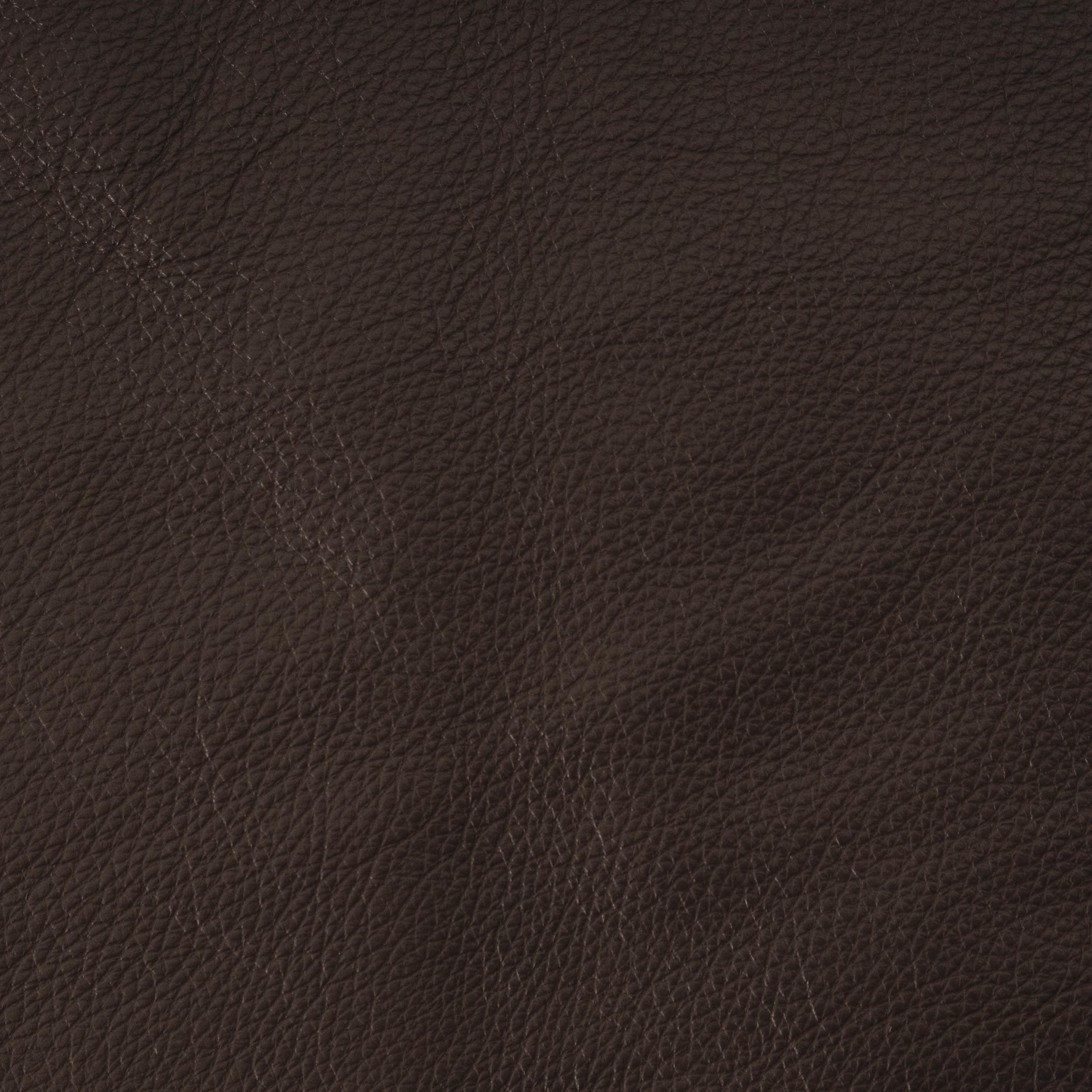 Mesa Espresso Leather