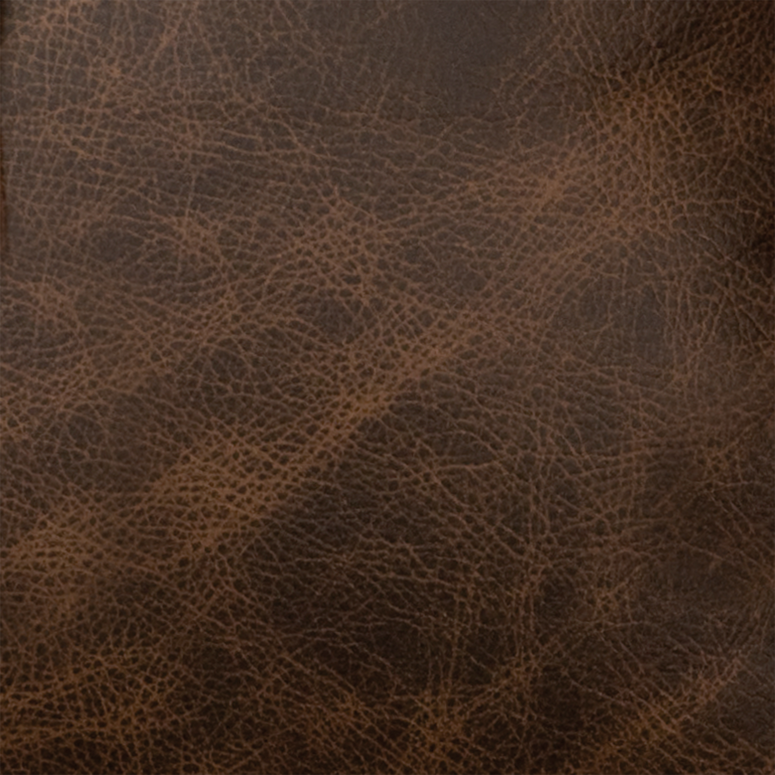 Texas Leather