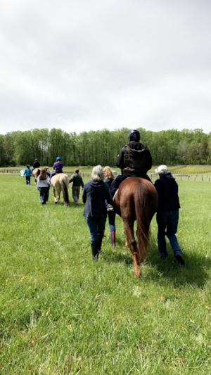 Therapeutic Riding - Safely teaching a broad portfolio of riders with diverse emotional/physical/cognitive challenges, the lessons taught by a certified therapeutic riding instructor promote independence and strive towards holistic goals. Expert mentoring is also available for those wishing to pursue instructor certification.