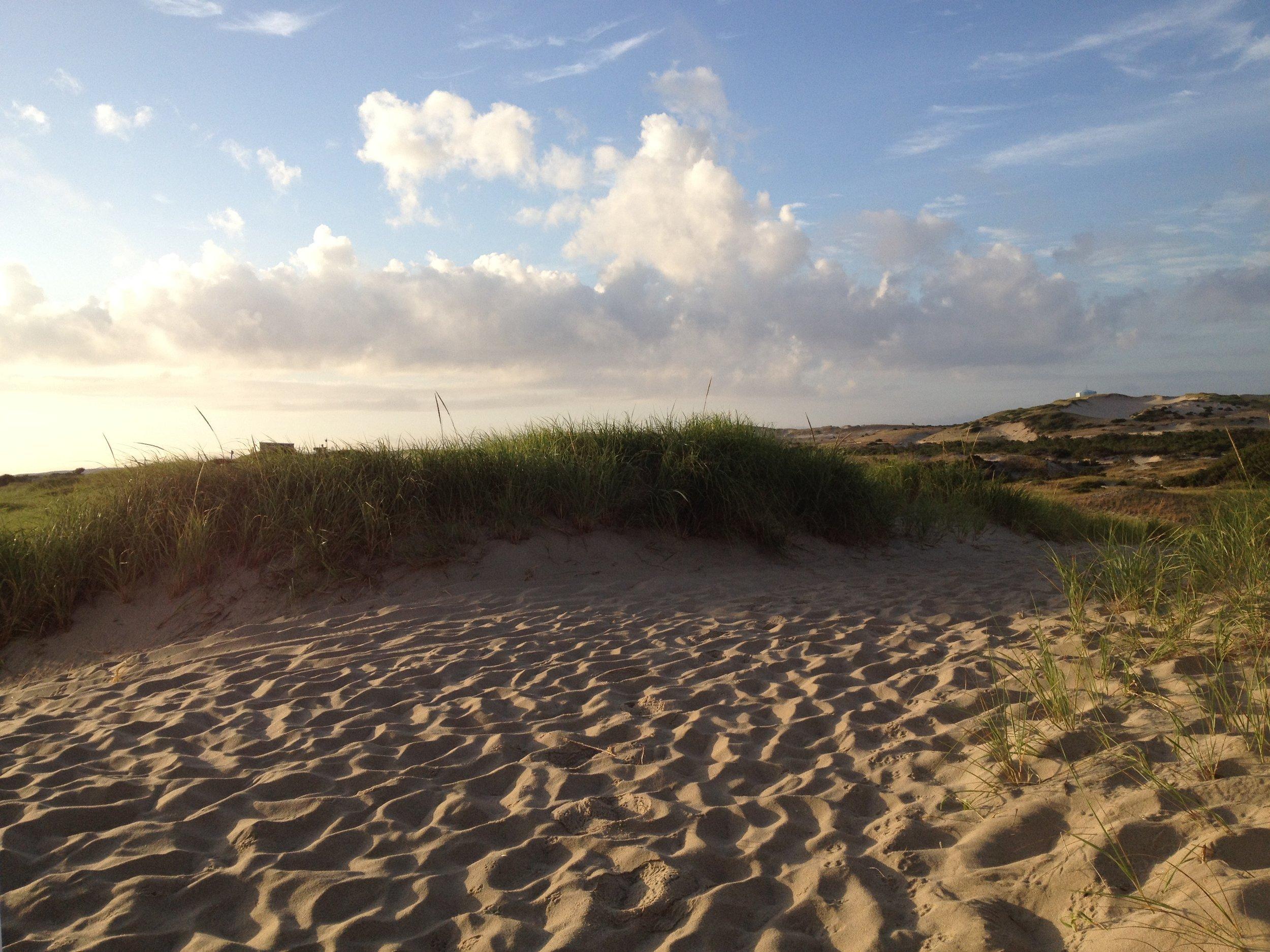 Sand Dunes near Wellfleet, MA, on Cape Cod