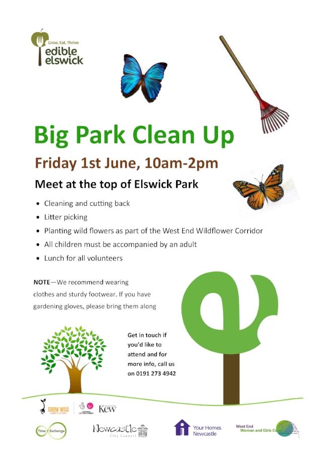 Big Park Clean Up 1.6.18.jpg