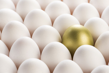 propserity egg.jpg