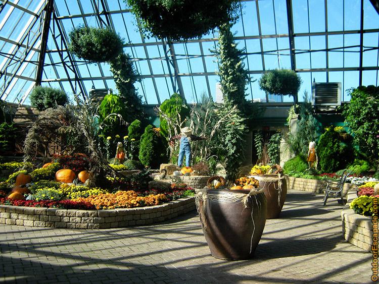 muttart-conservatory-10.jpg
