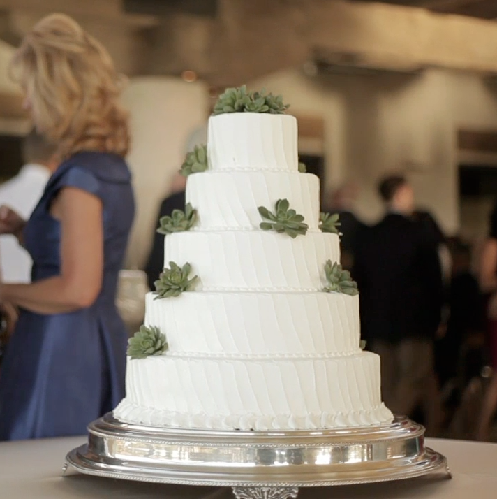 Houston rustic outdoor wedding pic 04 succulent cake