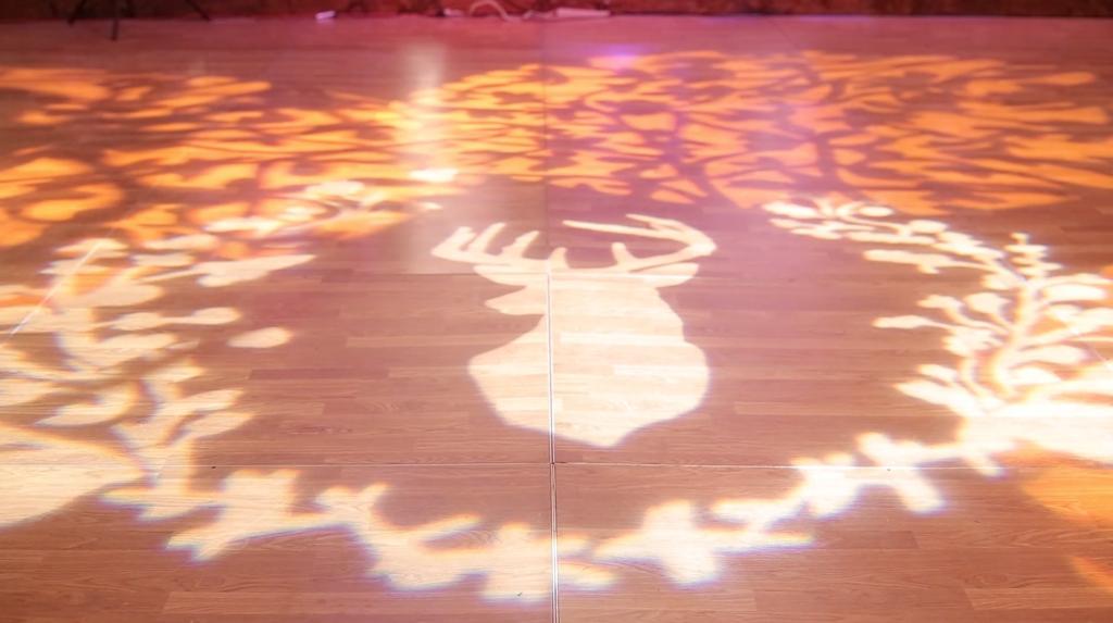 Riverhill Country Club Viridian Wedding Pic 25 deer dance floor