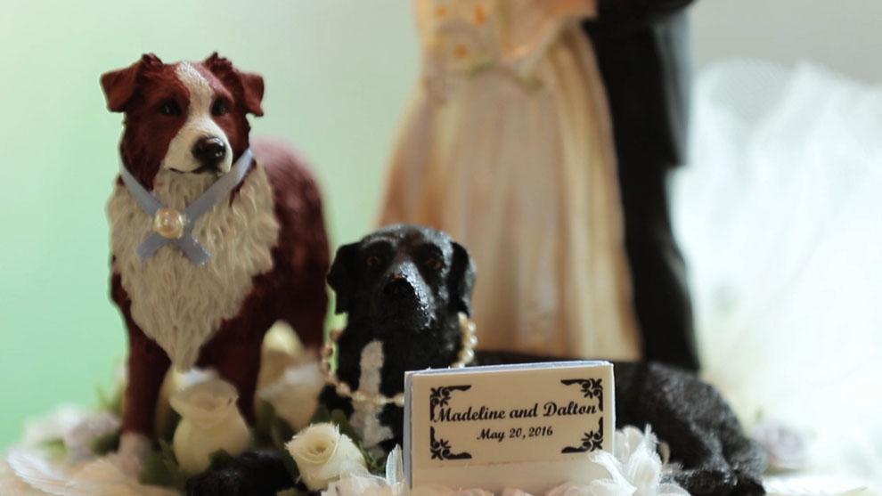 Bridal-Veil-Falls-Wedding-4.jpg
