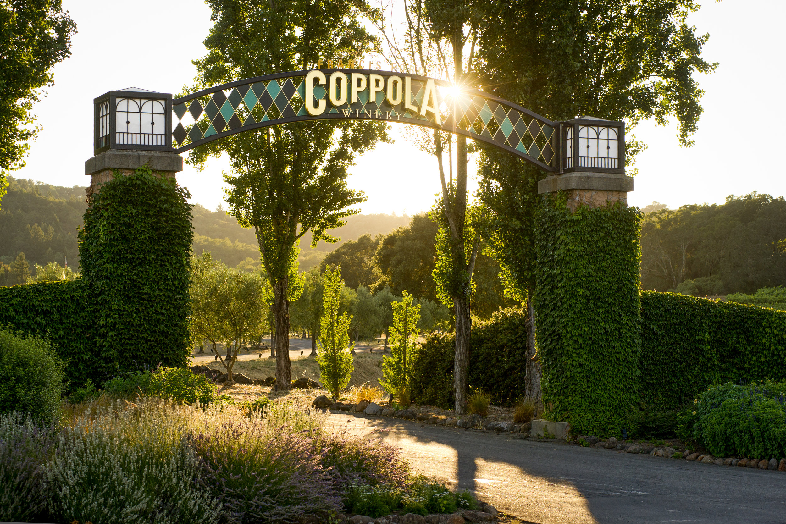 Coppola Winery_entrance.jpg