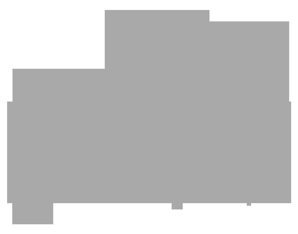 Contact_WebLogos_SaltFire Brewing x.png