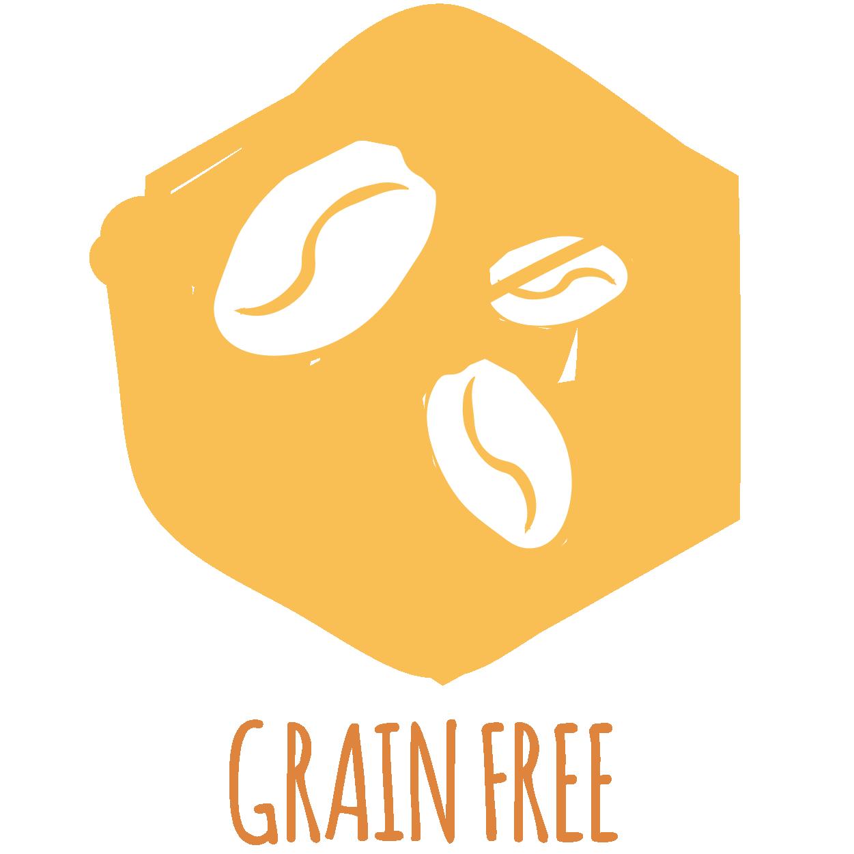 GRAIN AND GLUTEN FREE