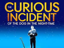 Matthew Trevannion in The Curious Incident of the Dog in the Night (WestEnd)