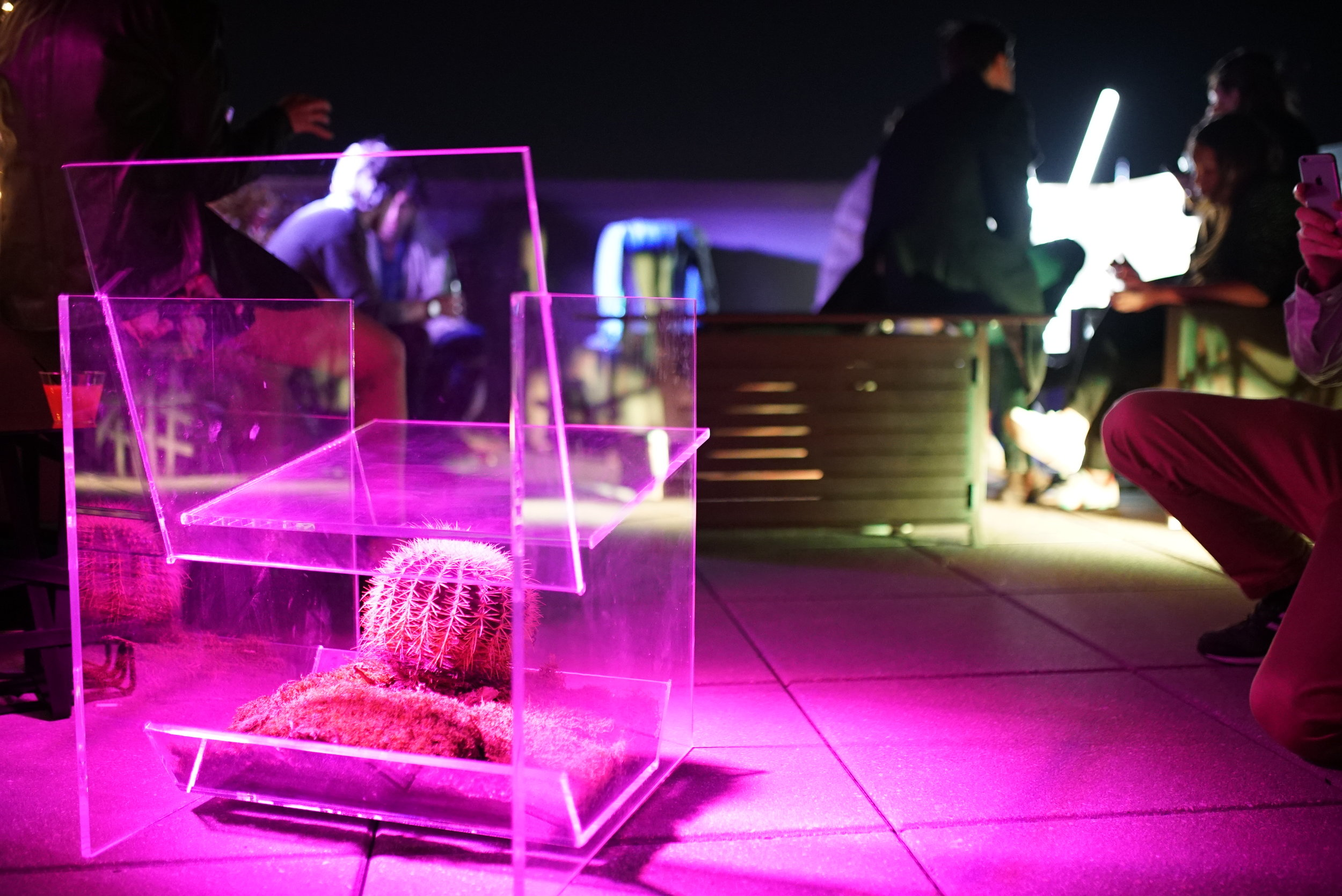 ny-events-product-launch-rooftop03074.jpg