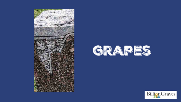 Grapes - Grapes on a gravestone symbolize the blood of Christ, God's care, or Jesus' Last Supper.