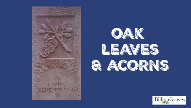 Oak Leaves & Acorns - Oaks are very slow growing trees. It can take 40-50 years for an oak to go from acorn to full-height and nearly a century before it fills in with thick leaves and branches. Oak trees can live to be 200 years old. An oak tree at a family homestead may have provided shade for several generations.Thus, the oak trees are gravestone symbols of strength and endurance. Oak branches or acorns on your ancestor's headstone may mean they lived a long life or endure a long illness.