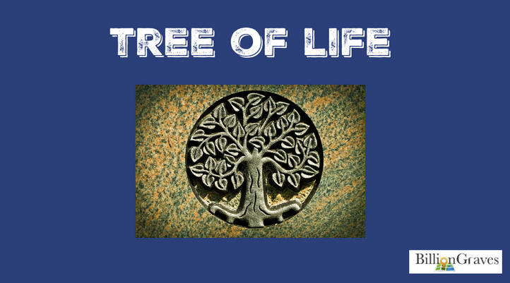Tree of Life - The tree of life is a cemetery symbol of immortality. The tree ages and moves closer to death, but it also bears the seeds that allow the tree to be reborn, so in a sense it becomes immortal.It can also be a symbol of strength and growth. Branches lengthen as they reach for the light of the sun. Young tree roots are shallow but eventually deepen as they age. Like the tree, the deceased may have become stronger by facing the wind, heat, and adversities of life.Genealogists may identify with the tree of life being a symbol of family. Our leaves and branches may go in many different directions, but we all come from the same roots.